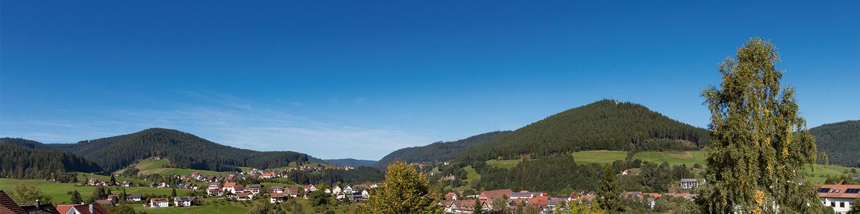 Teils herrlicher Ausblick vom Hotel über Baiersbronn